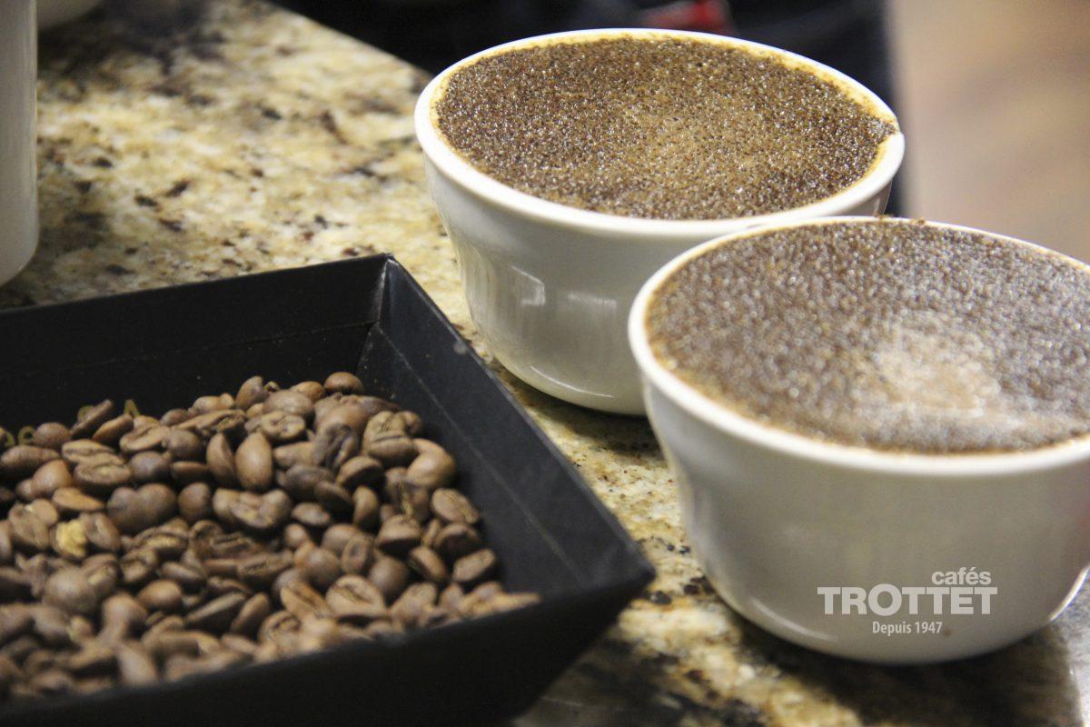explication sur le specialty coffee